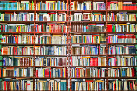 Whole big wall covered with lot of books Stock Photo - 1770142