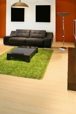 Modern living room with green and terracotta colors Stock Photo - 2395262