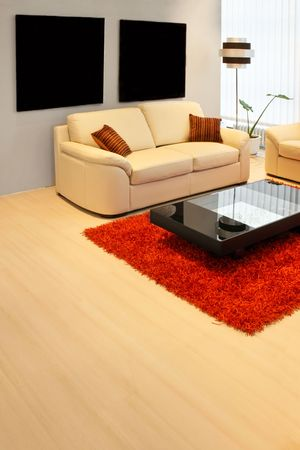Modern living room with real leather sofa photo
