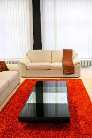Modern living room with real leather sofa Stock Photo - 2491319