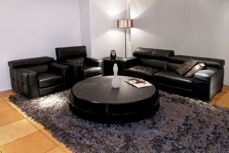 Modern black living room with two sofas Stock Photo - 2691428