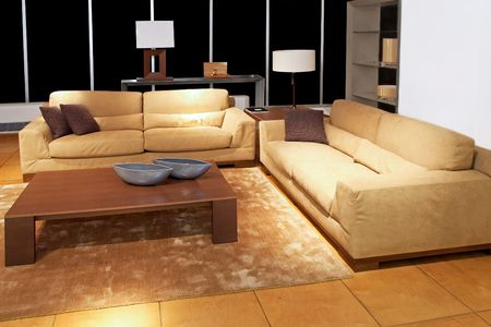 Modern brown living room with two sofas Stock Photo - 2691419