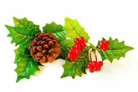 muerdago: Decoración de muérdago festivo de Navidad sobre fondo blanco