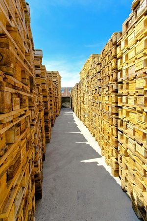 Corridor of cargo pallets at big warehouse  Stock Photo - 8474874
