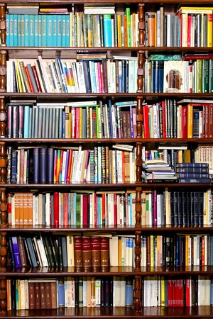 biblioteca: Muchos libros en la estanter�a en casa Serbia de Belgrado de biblioteca 17.03.2009  Editorial
