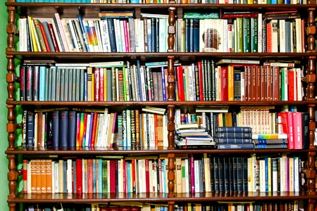 Many books in shelf at home library 17.03.2009 Belgrade Serbia  Stock Photo - 9095067