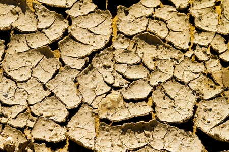 dryness: Cracked land and dirt at drought in desert
