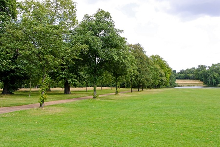 timberland: Green grass field in London Hyde Park