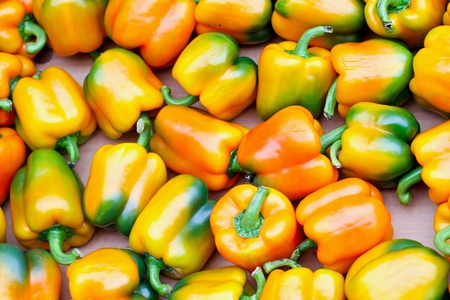 Big pile of organic freshly grown peppers  photo
