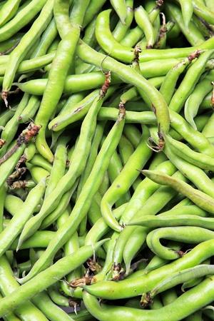 common bean: Bunch of fresh organic green string beans Stock Photo