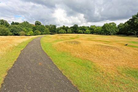 road and path through: Road path through big Greenwich park landscape