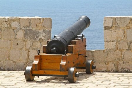 cannon gun: Medieval cannon at fortress wall