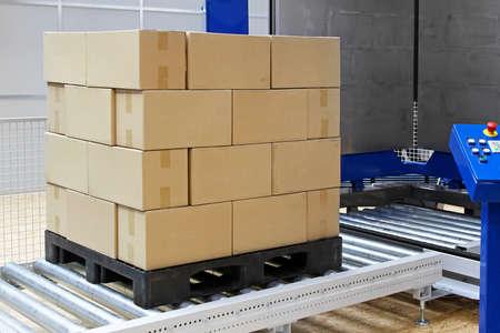 palet: Las cajas de cartón en la máquina empacadora transporte de pallets Foto de archivo