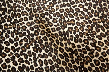 leopard skin: Safari style leopard hide pattern