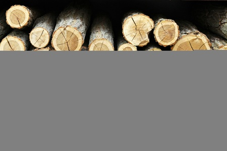 Big stack of firewood logs Stock Photo - 12351374