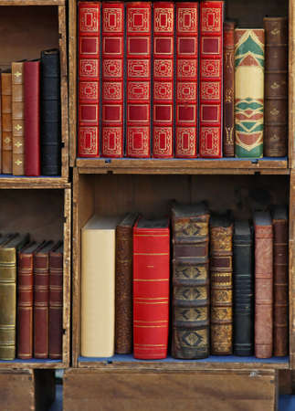 図書館: 古い本を持つ小さなライブラリ