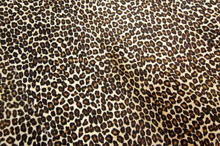 Wild leopard hide pattern textile background
