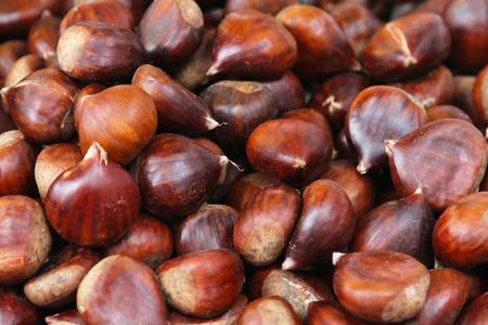 castaÑas: Gran montón de castañas crudas frescas listas para asar Foto de archivo
