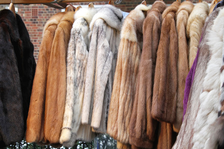 hides: Various animal fur coats at hangers Stock Photo