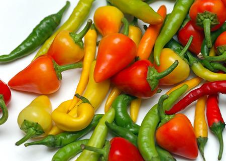 spicey: Variet� di peperoncino piccante e speziata