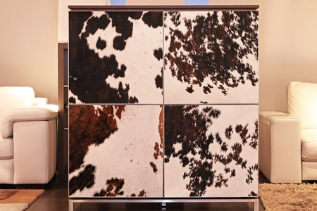 Contemporary square cabinet with cowhide doors