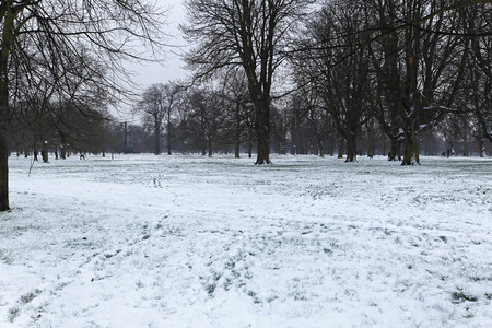 icy conditions: Snow in Hyde Park London Stock Photo