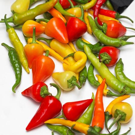 spicey: Variet� di peperoncino caldi e speziati