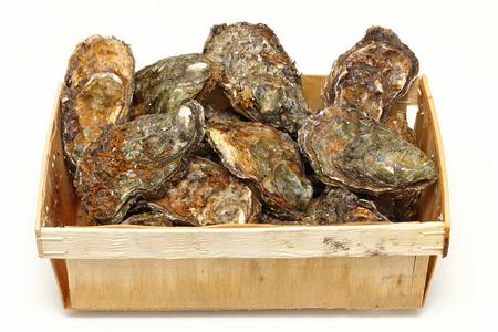ostra: Almejas ostras de rock de mariscos frescos en caja