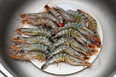 crustaceans: Fresh seafood shrimps crustaceans catch