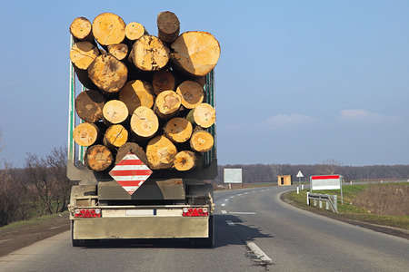 Logging lorry carry wooden logs at road photo