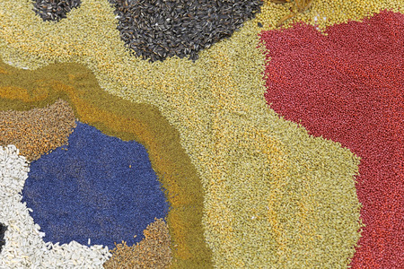seeds of various: Bunch of various cereal grains and seeds Stock Photo