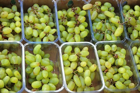 seedless: Seedless white grapes in plastic trays for sale