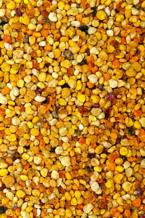 polen: Big bunch of bee pollen granules texture