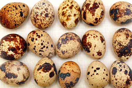 delicacy: Traditional Japanese cuisine delicacy organic quail eggs