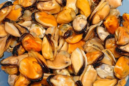 sea food: Big bunch of mussels clams sea food