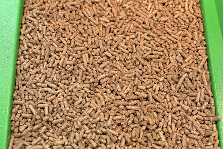 wood pellet: Wood pellet heating fuel made from compressed biomass Stock Photo