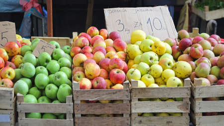 granny smith apple: Various Apples Fruits in Crates at Farmers Market Stock Photo
