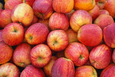 manzanas: Gran montón de manzanas rojas Idared