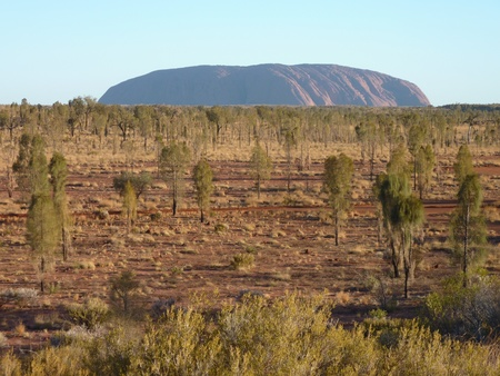 ayers: Uluru  Ayers Rock  with vegetation foreground