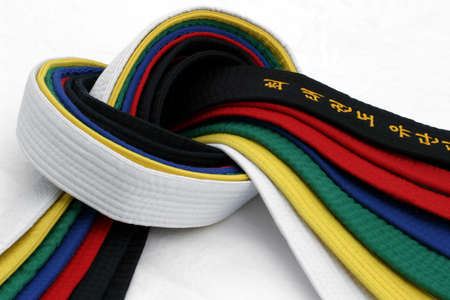 Martial Arts Belts 3 - From White Belt to Black belt Stock Photo - 500056