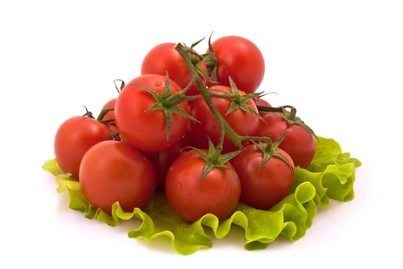 Cherry Tomatoes on Salad Leaves Isolated on White Background