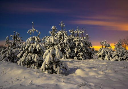 Winter Landscape. Night shot. 31st of December 2009. Stock Photo