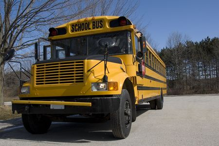 A yellow North American school bus stands in a parking lot in early spring.