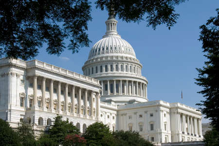 elected: The Capitol, located in Washington, DC, is the building in which the United States Congress meets.