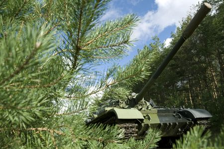 concealed: A Soviet tank concealed in a northern forest.