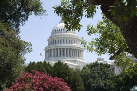 The rotunda of the Capitol building in Washington, DC, framed by trees.  In the late 19th century Washington came to be known as the City of Trees, and that nickname still holds true. The citys design by French engineer Major Pierre Charles LEnfant call Stock Photo