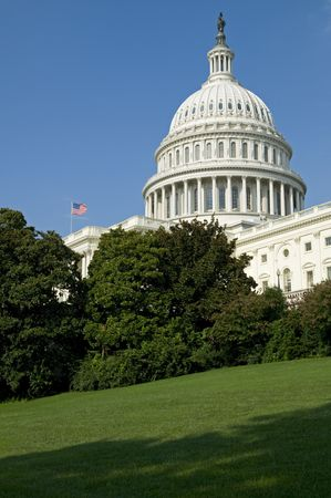 governing: The US Capitol Building in Washington, DC.