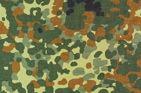 material: A section of contemporary German camouflage material known as Flecktarn.