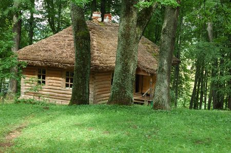 Old house with straw roof in the dense forest photo