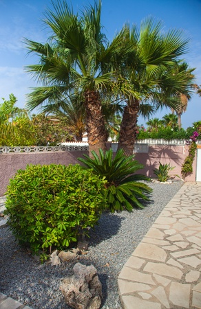 Mediterranean stone garden with path photo